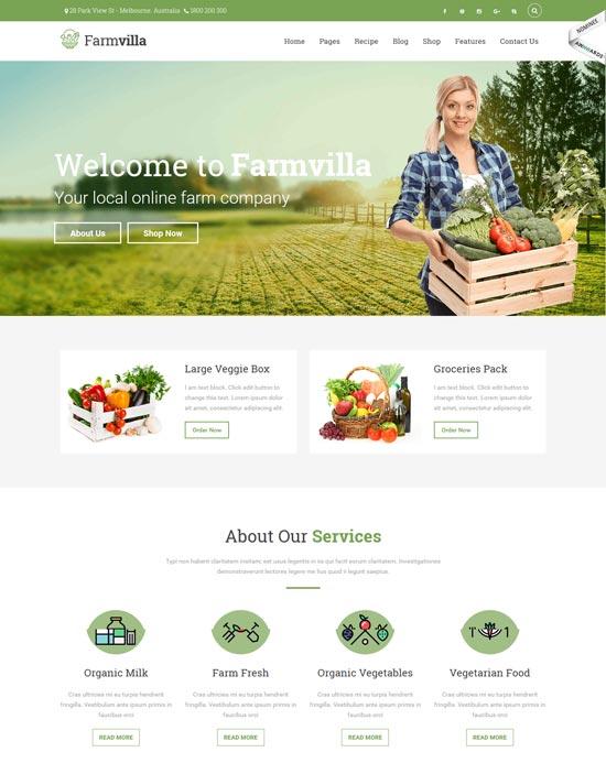 farmvilla organic food wp theme