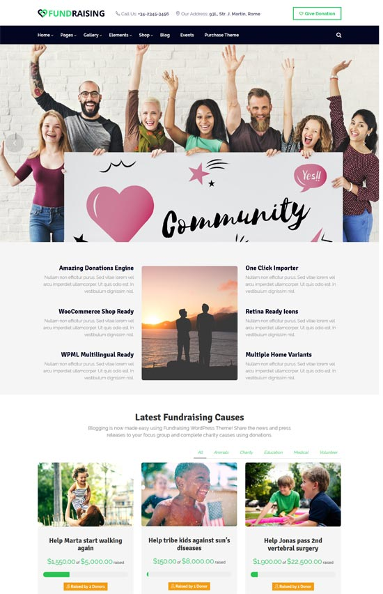 fundraising ultimate charity wordpress theme