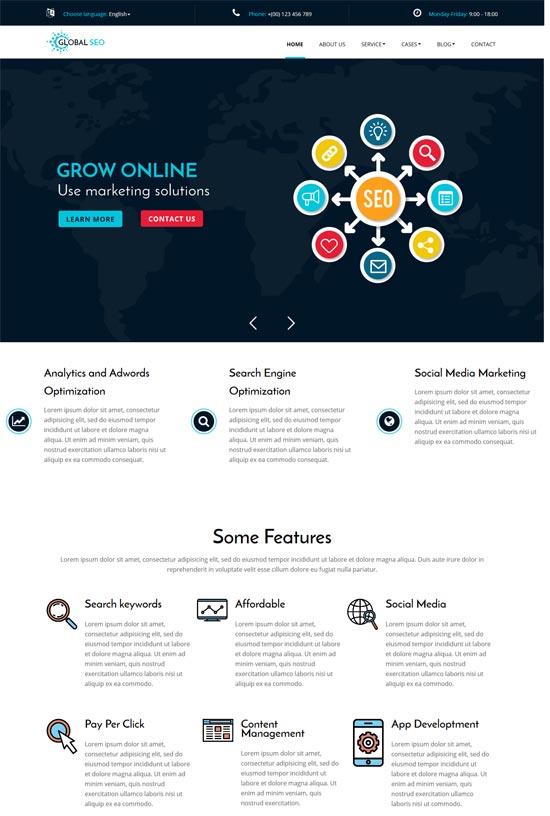 global seo marketing seo wordpress theme