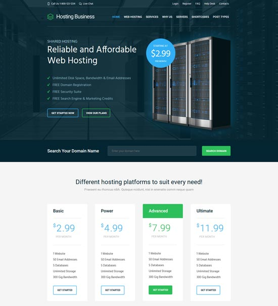 hosting business software WordPress theme