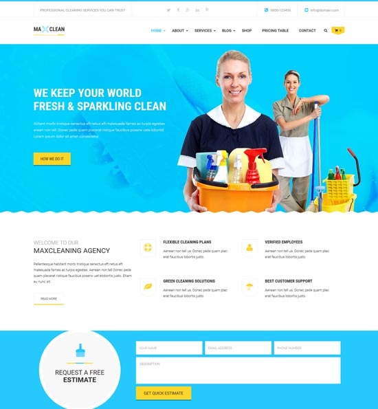 max cleaners wp theme