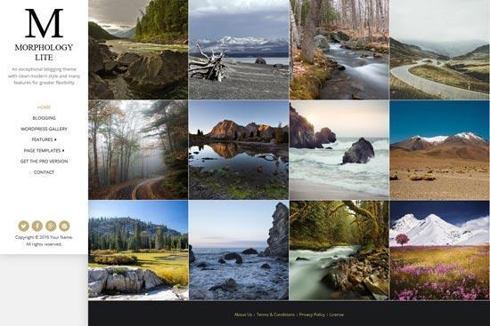 morphology lite free WordPress theme photography
