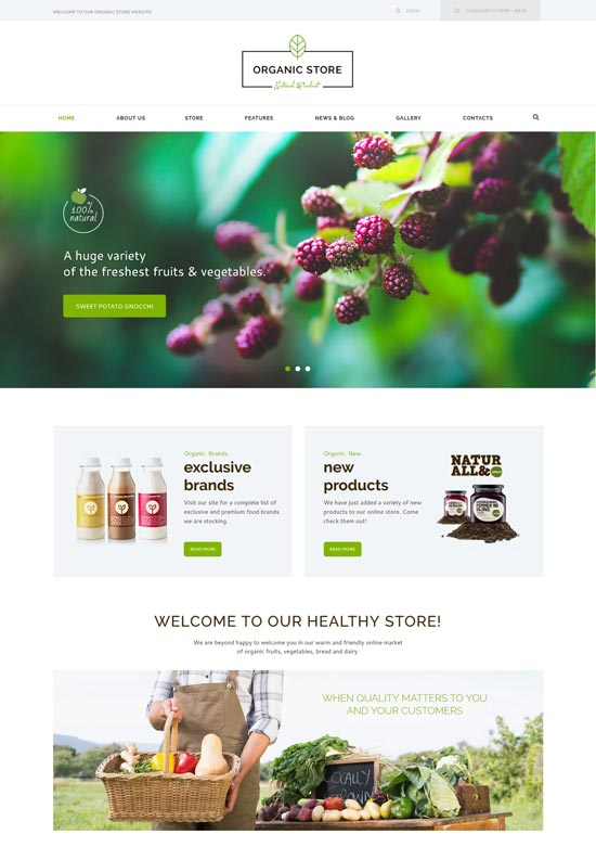 organic store eco products theme