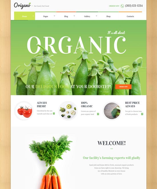 origano organic food eco farm theme