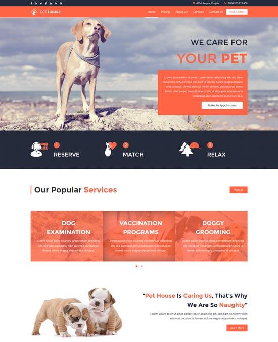 pet house pet care service template
