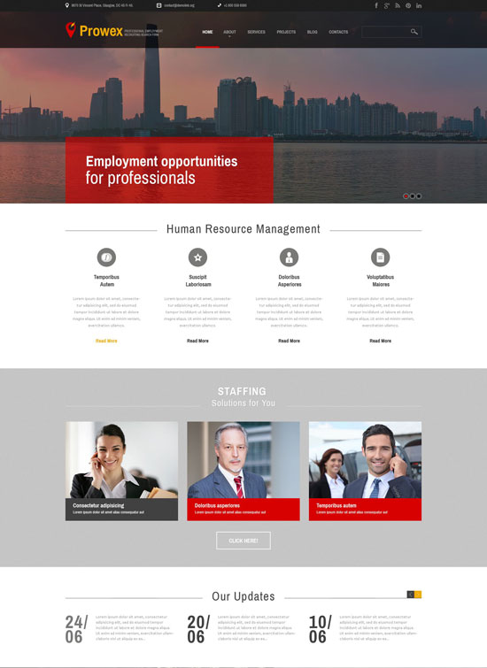 professional employment job wordpress theme