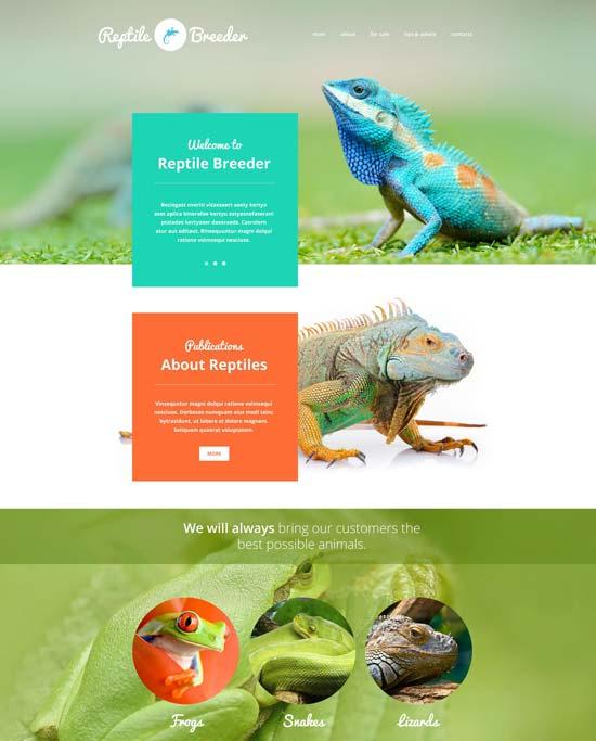reptile-breeder-website-template
