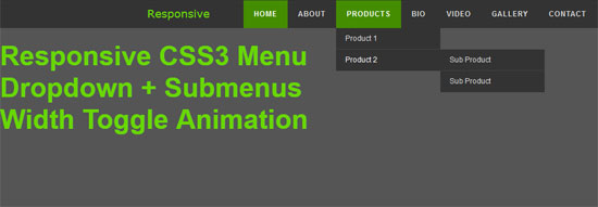 responsive css3 menu with toggle animation