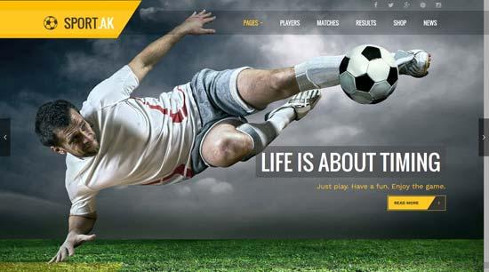 sport theme for football hockey basketball club