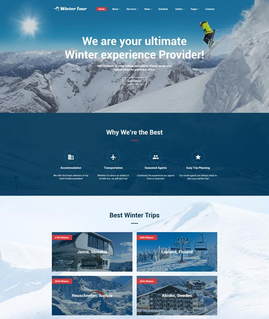 winter tour travel agency website template
