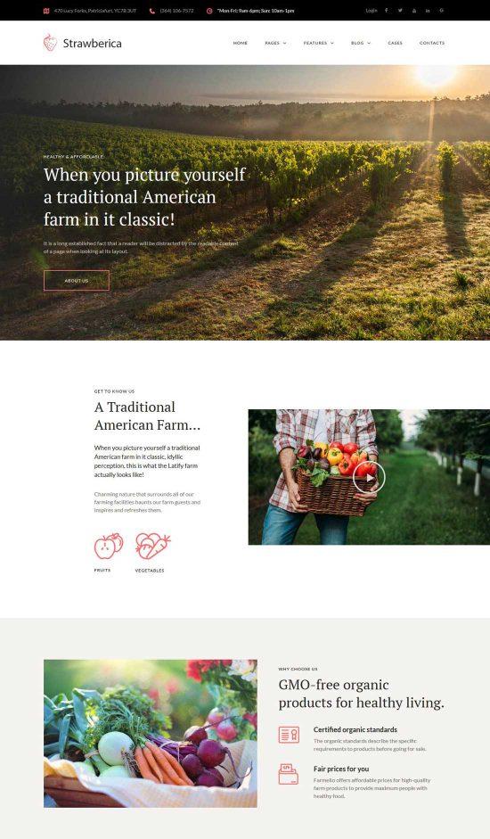 strawberica vegan farm wordpress theme