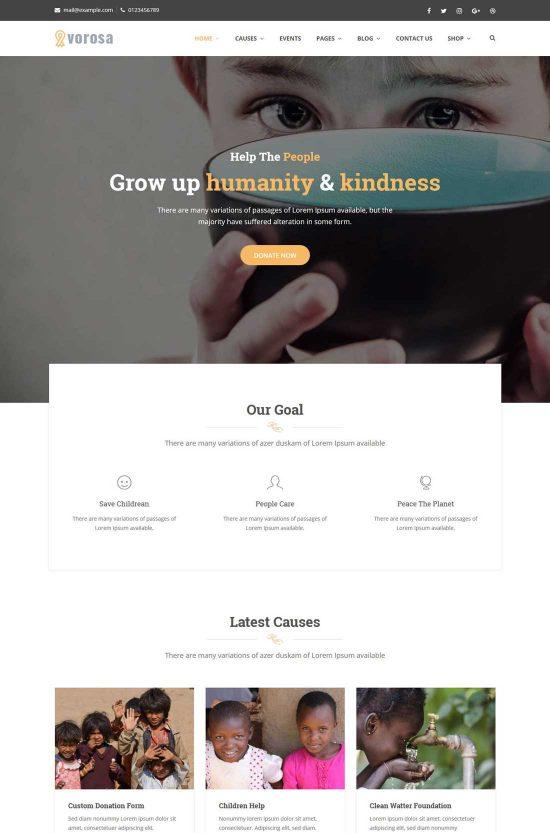 vorosa charity wordpress theme